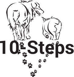 ASHGI 10 steps logo