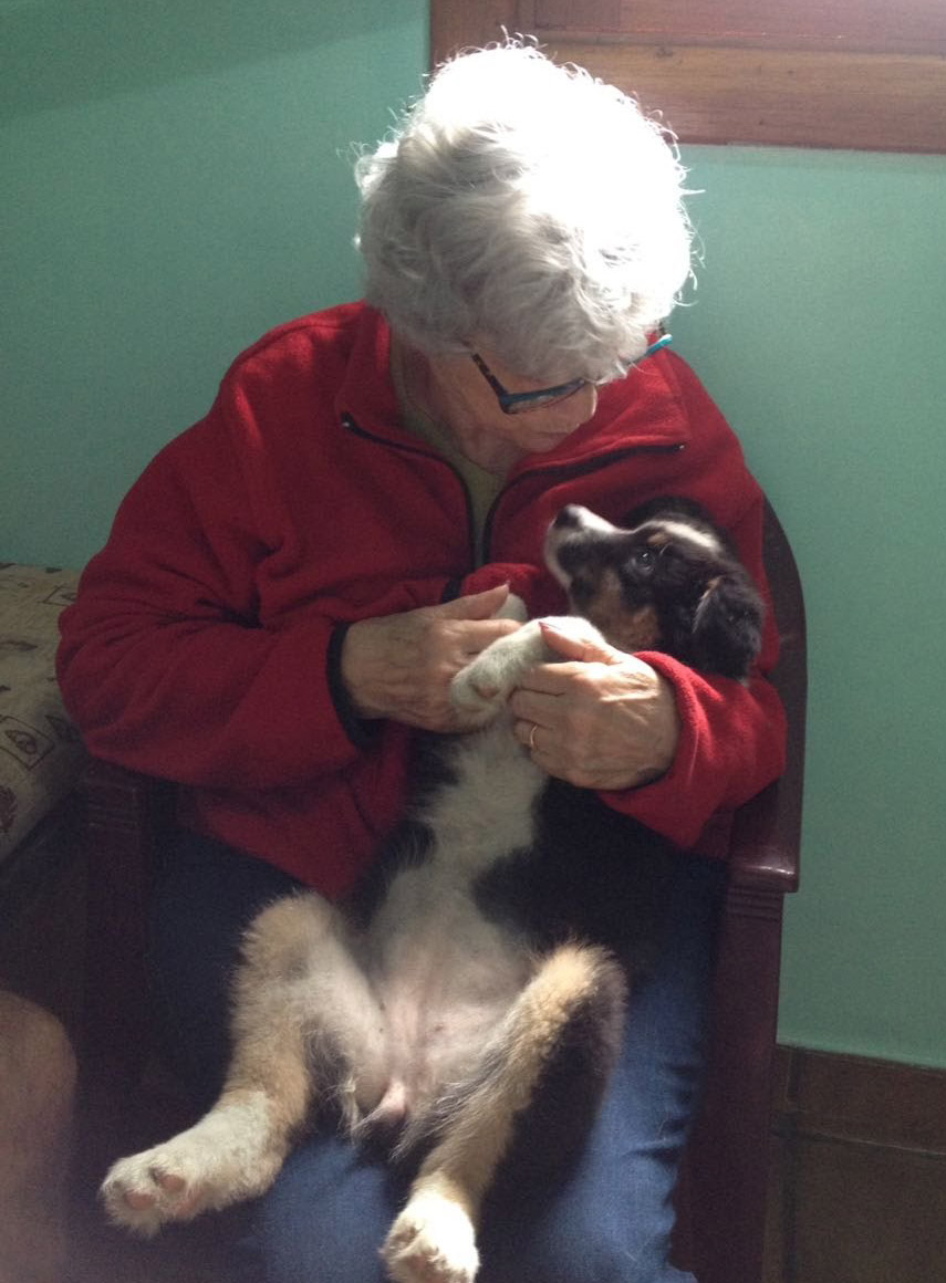 Photo of Marcia Bertero from the Wind Spirit Kennel with our Emma as a puppy on her lap
